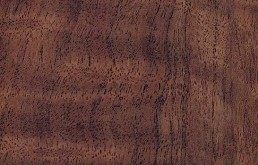 Artis Black Walnut Silkwood 600mm Worktop